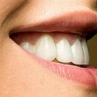 hammas-2